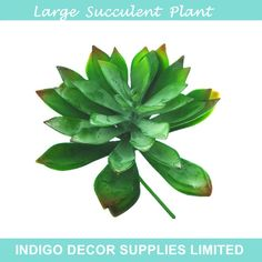 Find More Decorative Flowers & Wreaths Information about Big Size Green Desert Lotus Artificial Succulent Plant Plastic Flower Decoration Plant Background Free Shipping,High Quality flower vases for sale,China planting flowers in pot Suppliers, Cheap flower anchor from Indigo Decor Supplies Limited on Aliexpress.com