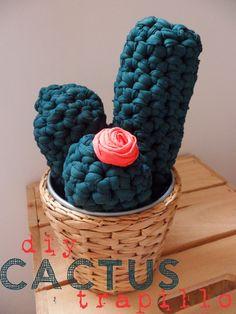 sal i oli: Cactus de trapillo