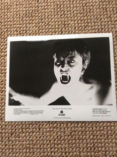 Amanda Donohoe LAIR OF THE WHITE WORM - Studio  promo photograph by C Coote  | eBay