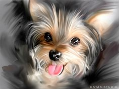 YORKIE dog portrait original art painting CANVAS GICLEE PRINT