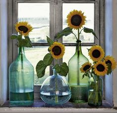 Sunflowers Turn - Poppytalk