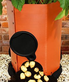 Potato Planter  Harvest delicious crops of potatoes on your patio, deck, or balcony! $29.95