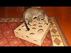 Игрушка для кота из картона своими руками. Поделки из картона - YouTube