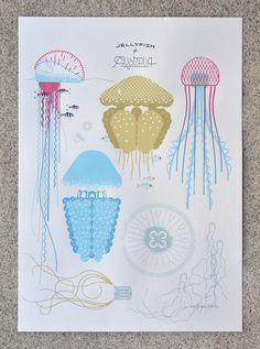'Jellyfish of Australia' screen print is now available.  The 'Jellyfish of Australia' screen print shows Australia's most iconic jellyfish: the Brown Spotted (Swan River) Jellyfish, Portuguese Man of War, Mauve Stinger, the 'Immortal' Jellyfish, South Western stinger, 'Blue Blubber' Jelly, Moon Jelly, and the very deadly Irukanji Box Jellyfish.  6 colour, 100% handmade/hand pulled silk screen print.  225 gsm paper. Size: A2 (42 x 59.4cm)  #screenprint #jellyfish #australia