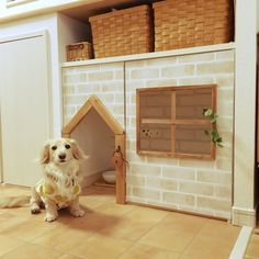 Erinさんの、わんこ,ペットスペース,インテリアシート,DIY,レンガ壁紙,かご,ペットトイレ,棚,のお部屋写真