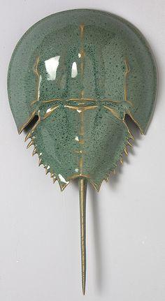 Horseshoe Crab by Mark Rea - Stingray Fish Ceramic Fish, Ceramic Pottery, Ceramic Art, Seashell Crafts, Beach Crafts, Aliens, Stingray Fish, Crab Crafts, Crab Art