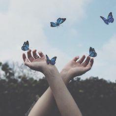 Imagen de butterfly, blue, and tumblr