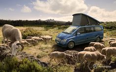 Mercedes-Benz Viano. Fun & Marco Polo. Fuel consumption combined: 11,9-7,1 l/100km, CO2 emissions combined: 279-187 g/km. #MBCars