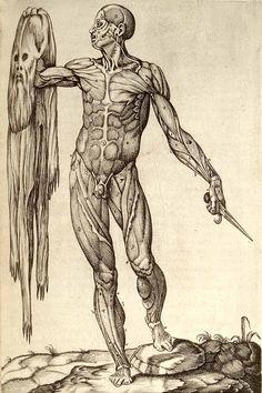 """Anatomia del corpo humano"" by Juan Valverde de Amusco (1559)"