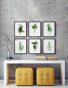 Herbs And Spices Set of 6 Art Prints. Abstract Botanical Watercolor Painting. Green Spices Kitchen Decor. Herb Chart Foodart Drawing. Green