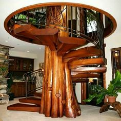 Spiral tree staircase in tree house.