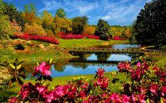 40+ Beautiful Nature Wallpapers