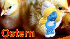 ❤Frohe #Ostern Feiertage , #Ostertage #Osterfest Happy #Easter Mal #lustig sexy und erotisch.❤#Lachen ist gesund