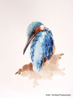 King fisher Bird  Bird watercolor painting Bird art