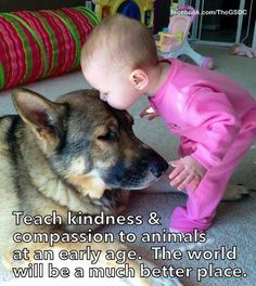 Teach kindness  compassion to animals at an early age.