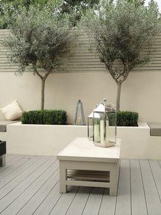 47 New Ideas Garden Modern Patio Trees Urban Garden Design, Back Garden Design, Patio Trees, Potted Trees, Trees In Pots, Potted Olive Tree, Patio Fence, Small Courtyard Gardens, Small Gardens