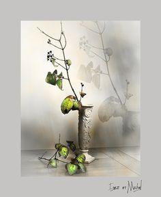 Still Life, Display, Plants, Collection, Art, Billboard, Flora, Kunst, Plant