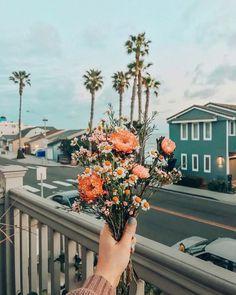 Flowers Vintage Botanical Flora 61 Ideas For 2019 Boho Aesthetic, Flower Aesthetic, Blonde Aesthetic, Wild Flowers, Beautiful Flowers, Ranunculus Flowers, Bouquet Flowers, Peach Flowers, Fresh Flowers