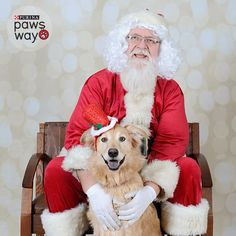 Please vote for this entry in Santa's Squad of Purina PawsWay Pets - Photo Contest!