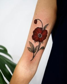"coolTop Body - Tattoo's - 7,209 Likes, 56 Comments - Sophia Baughan (@sophiabaughan) on Instagram: ""Popp... #FlowerTattooDesigns"