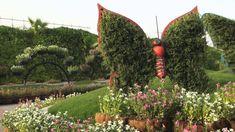 Градината на пеперуд
