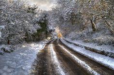 #Schnee, #Bäume, #Natur, #Wald, #Landschaft, #Straße, #Gebirge, #Winter