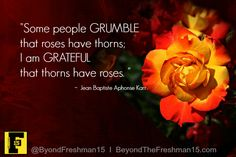 Do you tend to grumble about the thorns or marvel at the beauty of the rose?  #mindset #motivationalMonday