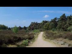 Fietsroute Maasduinen en omgeving