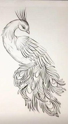 Sketchbook Drawings, Bird Drawings, Animal Drawings, Art Sketches, Pencil Drawings, Vine Drawing, Cross Drawing, Peacock Nail Art, Peacock Tattoo