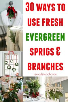 30 Ways to Use Fresh Evergreen @Remodelaholic #winter #decorating #12days72ideas