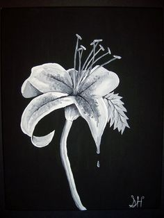 Black and White Lily Acrylic Painting by TheHayesGallery on Etsy, $149.99