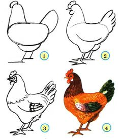 Image result for chicken painting sketch