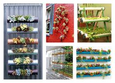 Vertical gardens are a great solution that will serve you as a garden decor element. We have rounded up this collection of Vertical Garden Ideas.