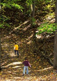 Orienteering for kids is a great sport with lots of fantastic learning opportunities for homeschooling. Kids Camping Gear, Camping With Kids, Survival Prepping, Survival Skills, Outdoor Fun, Outdoor Camping, Basic Geography, Bear Grylls Survival, Girl Scout Juniors