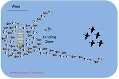 duck decoy spreads | Hunting Big Lakes & Open Water Duck Hunting Blinds, Duck Hunting Boat, Bow Hunting Deer, Quail Hunting, Waterfowl Hunting, Hunting Dogs, Hunting Stuff, Hunting Gear, Duck Season