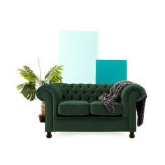 Free delivery over to most of the UK ✓ Great Selection ✓ Excellent customer service ✓ Find everything for a beautiful home Buy Sofa Online, Chesterfield Chair, Beautiful Homes, Sofas, Love Seat, Accent Chairs, Lounge, Couch, Green