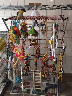 DIY play area for KiKi my Caique.