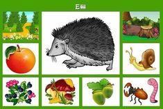 Free Preschool, Preschool Worksheets, Preschool Activities, Animal Crafts For Kids, Animal Activities, Diy Crafts For Gifts, Educational Toys, Games For Kids, Science