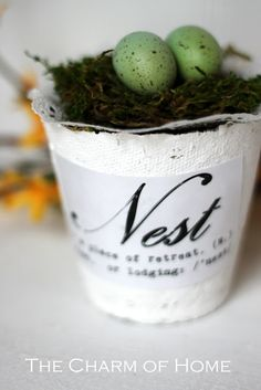 peat pot made into cool easter basket