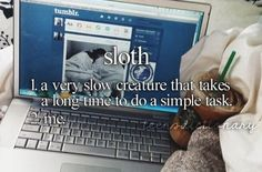 Sloth 1. A very slow creature that takes a long time to do a simple task.