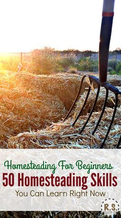 Here are 50 skills every homesteader needs.Great ideas for a self sufficient, urban & frugal life. Get your homesteading dream in motion! It's homesteading for beginners with little money, right where you are. And you can get started right now!
