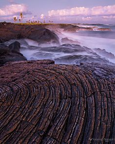 Pele's Paradise - A beautiful swirl of pahoehoe lava and coconut trees along the Puna Coast in Hawaii's Volcanoes National Park.