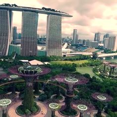 Top 10 Tourist Attractions in Singapore - Tour To Planet Singapore Tour, Visit Singapore, Singapore Travel, Places Around The World, Oh The Places You'll Go, Places To Visit, Around The Worlds, The Wonderful Country, Architecture