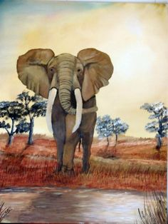 Elephant. Oil on canvas. 2013. Price on application