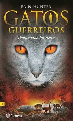 Livros Junior e Juvenil: GATOS GUERREIROS - Tempestade Iminente de Erin Hun...