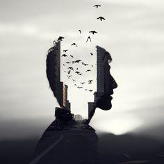 Mind the Birds | Flickr - Photo Sharing!