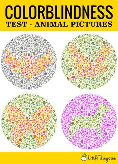 Oh DearBest Colorblindness Tests You Must Try  Visuelle