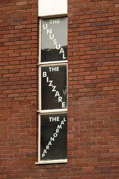 "scavengedluxury: "" The unusual.. The bizarre.. The Lamronarap. Wolverhampton, March 2016. """