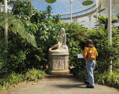 """sun-flowie: """" forever in love with kibble palace """""""