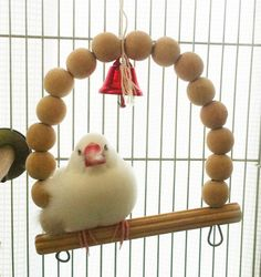 眠くてもふもふ #buncho #文鳥 Japanese Rice, Cute Japanese, Java, Animals And Pets, Funny Animals, Call Dusty, Cute Birds, Parakeet, Parrot
